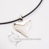 XL Bull Shark tooth silver Ag classic stylish design large s15