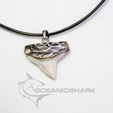 Bull Shark tooth silver necklace for sale carving solid s2