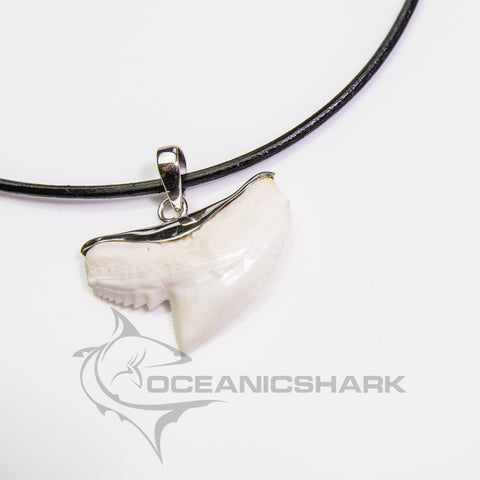 Tiger shark tooth original silver model wave beach surf wear s21
