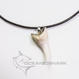 Mako shark tooth fishing diver hunting gift s27