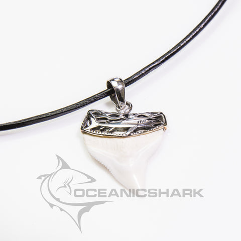 Bull Shark tooth silver art work pendant necklace sale s4