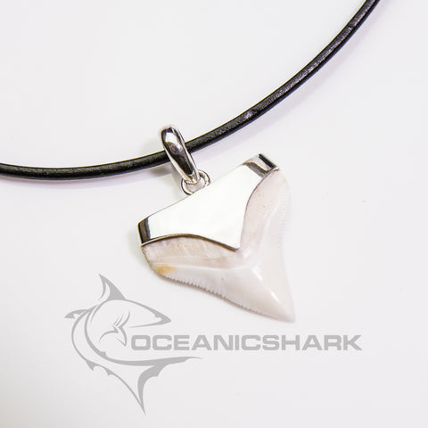 Bull Shark tooth silver Ag pointy arrow s9