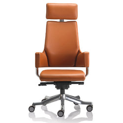 Delphi Luxury Executive Chair - Office & Others