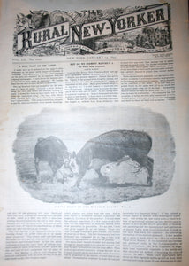 01 14 1893 NEWS Rural New-Yorker