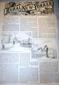01 17 1891 NEWS Rural New-Yorker