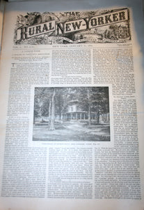 01 31 1891 NEWS Rural New-Yorker