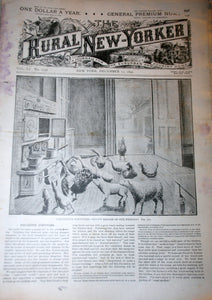 12 17 1892 NEWS Rural New-Yorker