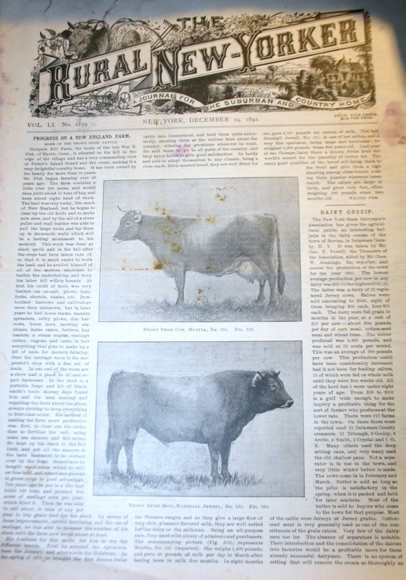 12 24 1892 NEWS Rural New-Yorker