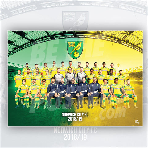 Norwich City FC 2018/2019 Squad Poster - Official Licensed A2 Poster