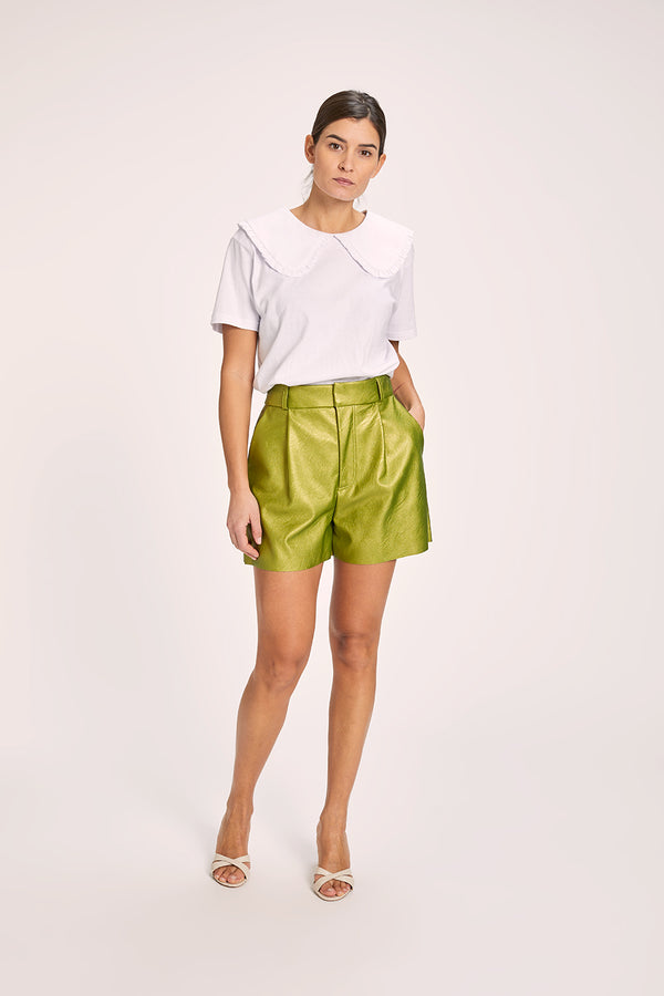 EDUCATA shorts