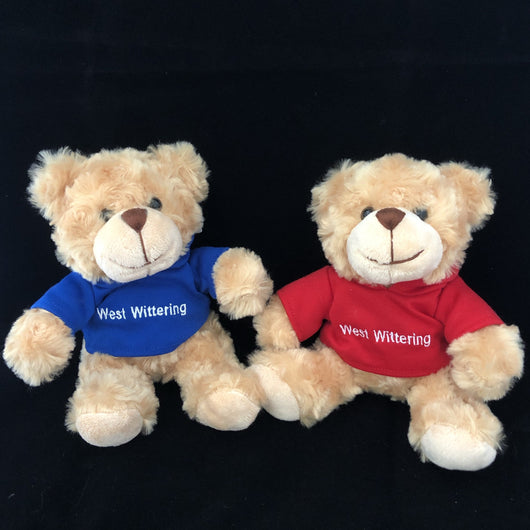 Teddy ~ NB113 West Wittering Teddy bear with hoodie 15cm h
