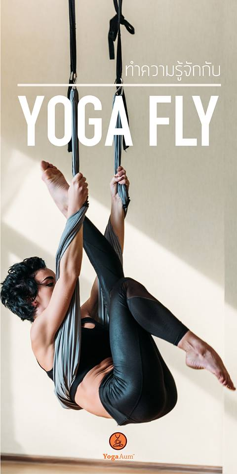 What is Yoga Fly?