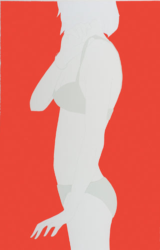 Grey Triangles on Red, Natasha Law
