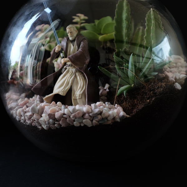 Star Wars Terrarium Series