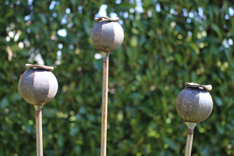 Poppy seed head stakes, plant pin