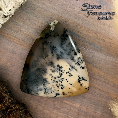 Trapper Creek Dendritic Agate