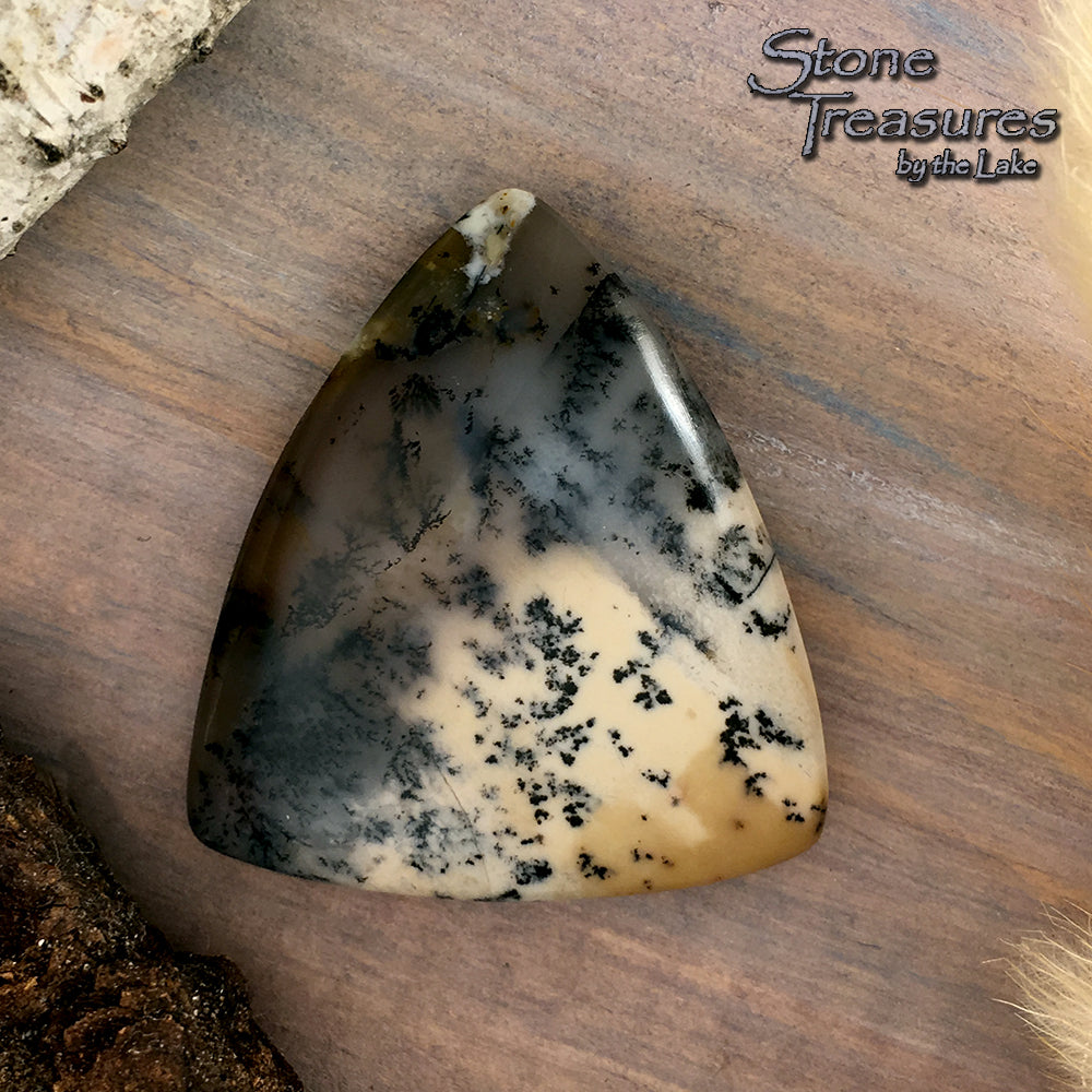 Trapper Creek Dendritic Agate - Stone Treasures by the Lake