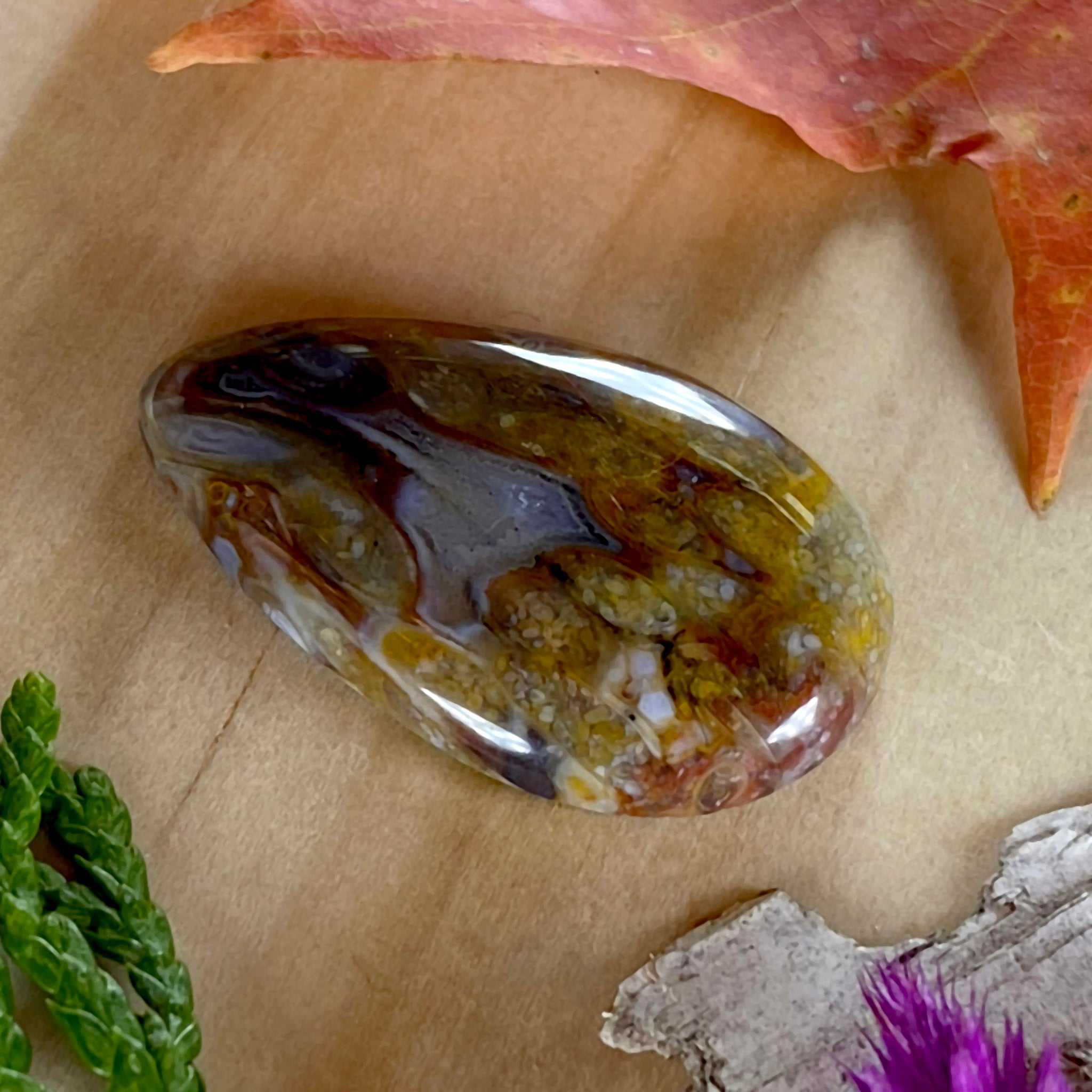 Caddis Fly Agate - Stone Treasures by the Lake