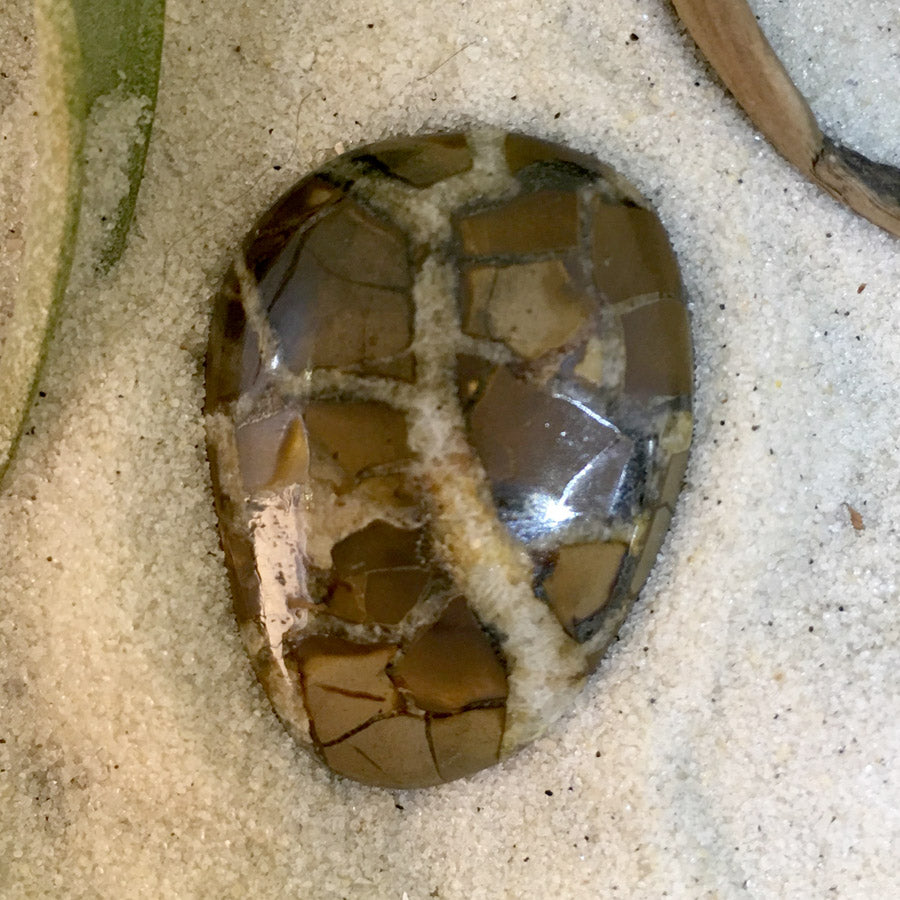 Septarian - Stone Treasures by the Lake