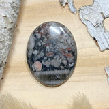 Crinoid Fossil Cabochon Front View - Stone Treasures by the Lake