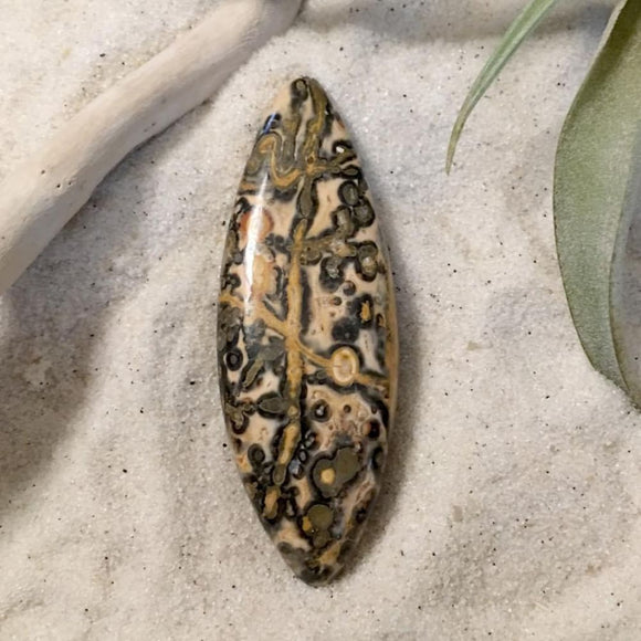 Mexican Leopardskin Stone Cab - Stone Treasures by the Lake