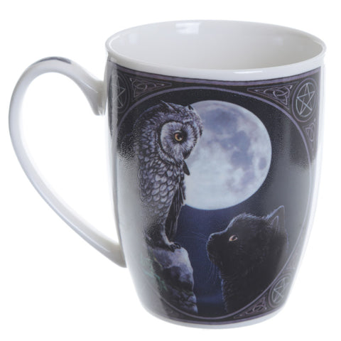 Purrfect Wisdom Owl and Cat Mug