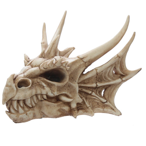 Collectible Dragon Skull