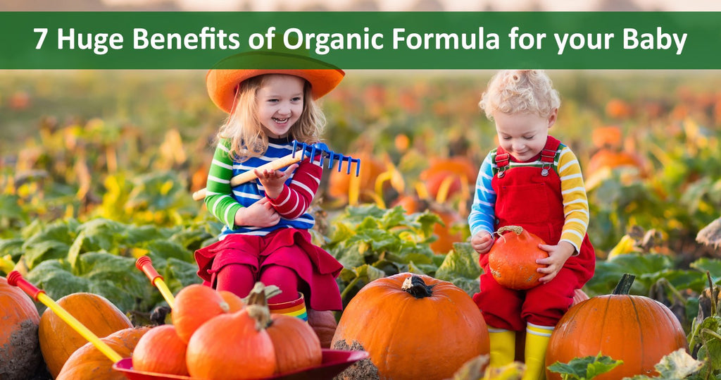 7 Huge Benefits of Organic Formula for your Baby