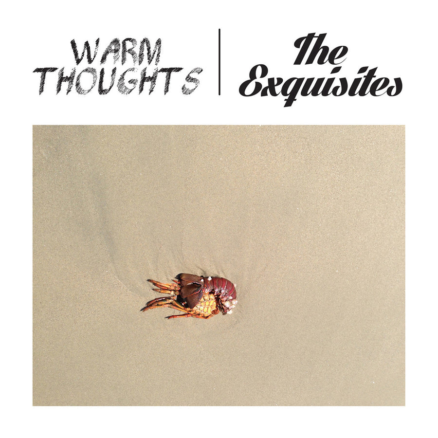 "Warm Thoughts (formerly Dad Punchers) / The Exquisites ""Split"""