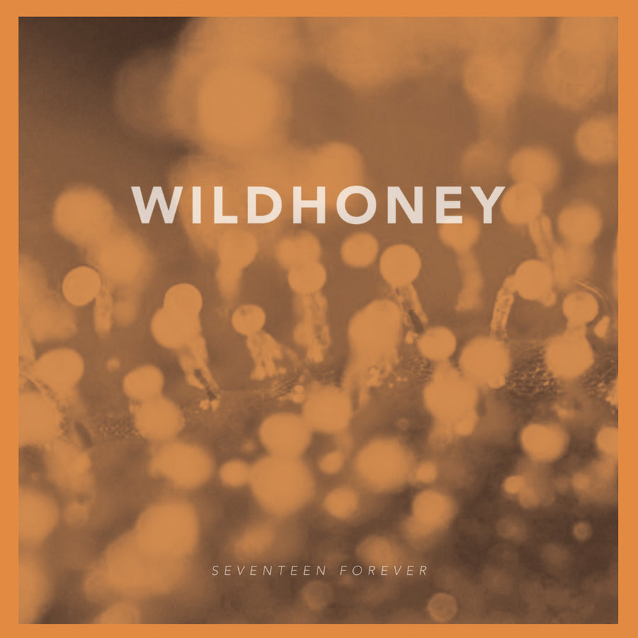 "Wildhoney ""Seventeen Forever"""