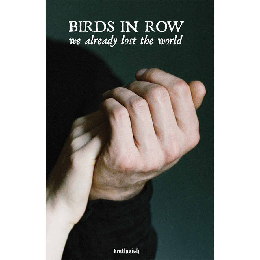 "Birds In Row ""We Already Lost The World"" Poster"
