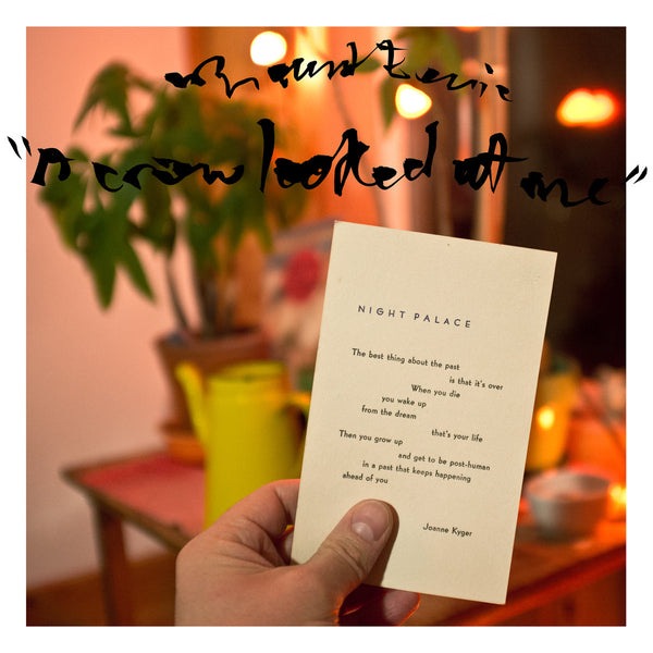 "Mount Eerie ""A Crow Looked At Me"""
