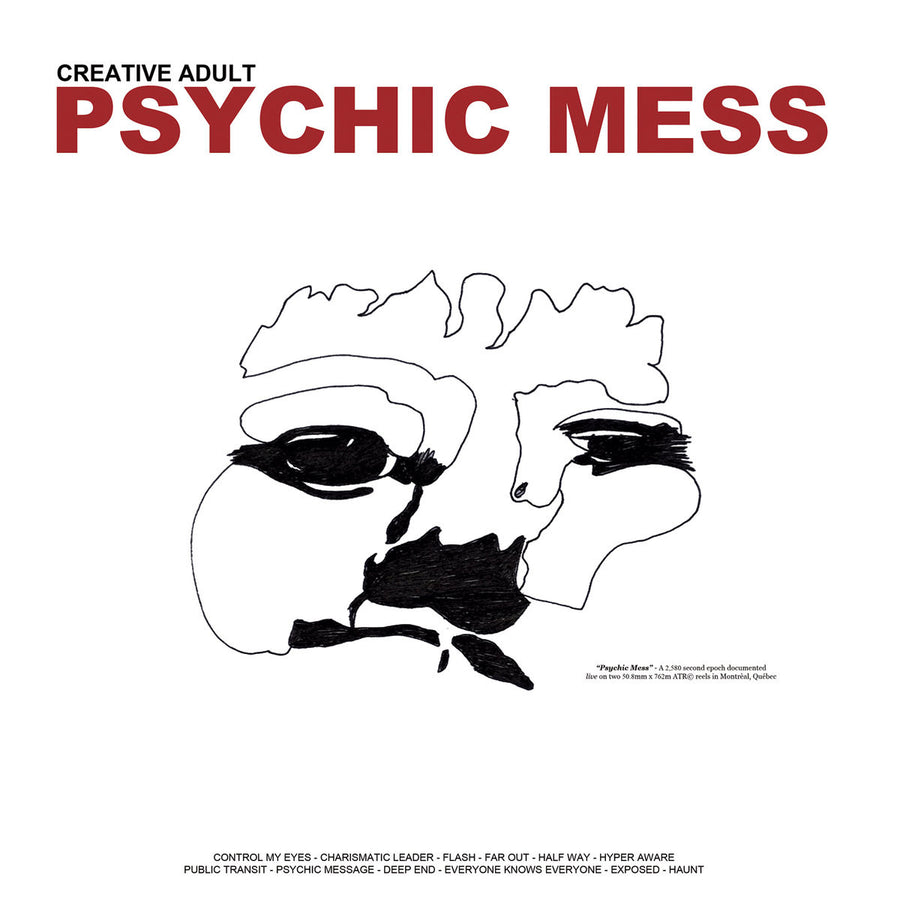 "Creative Adult ""Psychic Mess"""