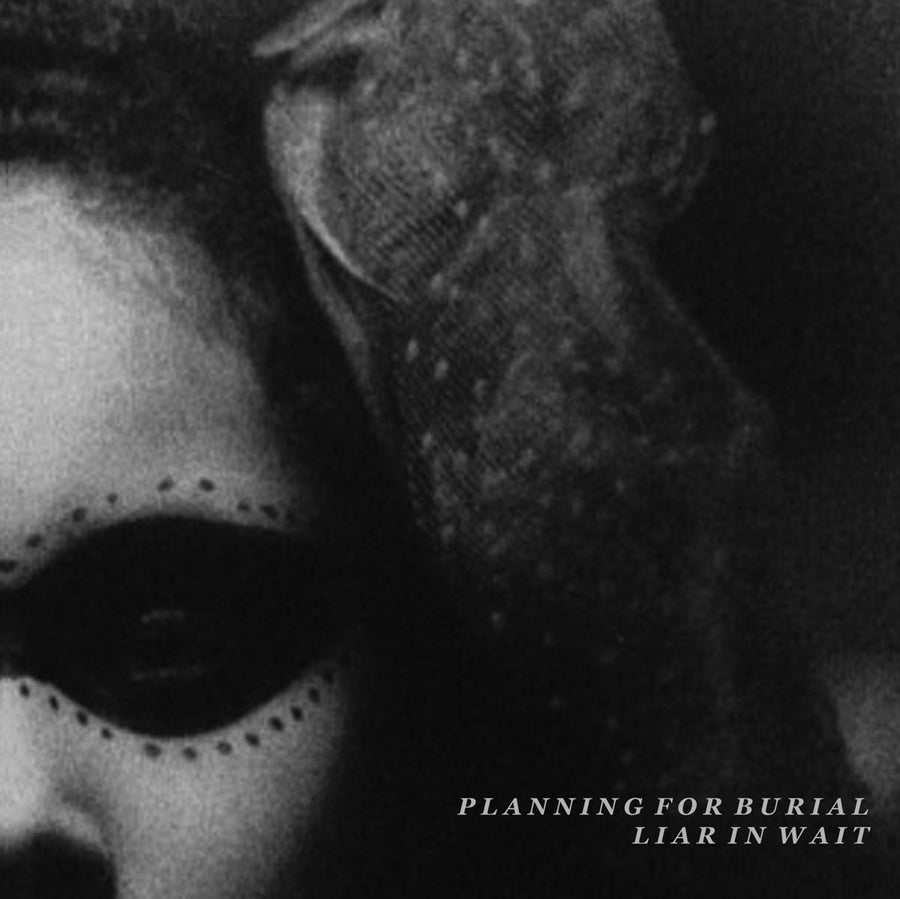 "Planning For Burial / Liar In Wait ""Split"""