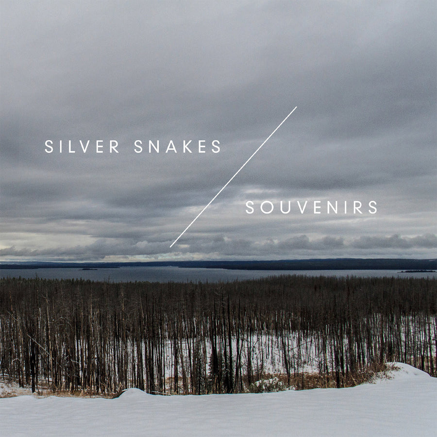 "Silver Snakes / Souvenirs ""Winter Songs"""