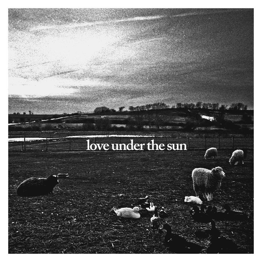 "Raindance ""Love Under The Sun"""