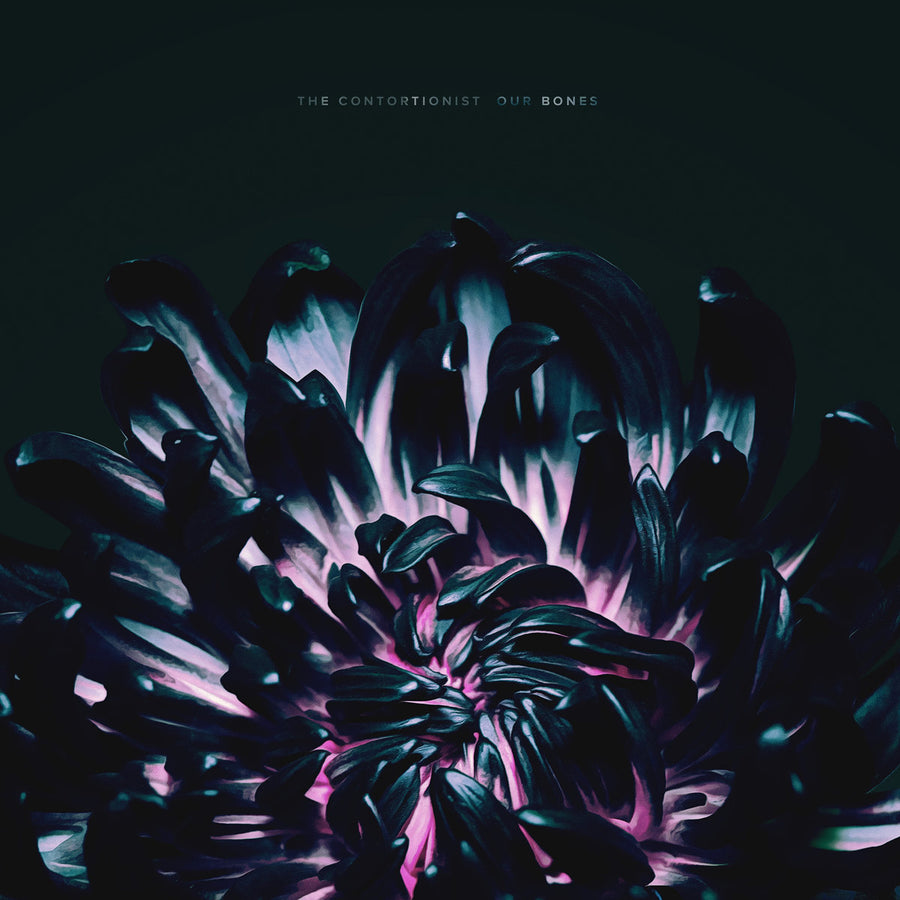 "The Contortionist ""Our Bones"""