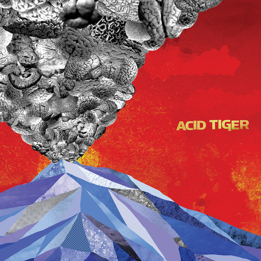 "Acid Tiger ""Self Titled"""