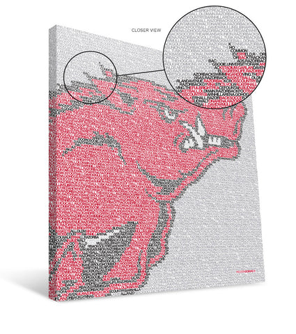 Arkansas Razorbacks Typo Canvas Print