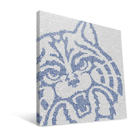 Arizona Wildcats Typo Canvas Print