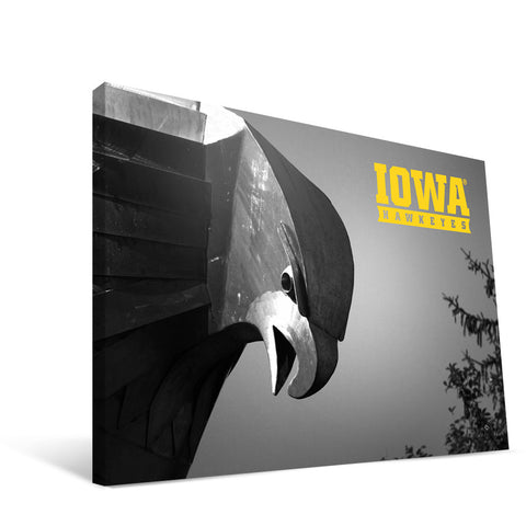 Iowa Hawkeyes Hawk Statue Head Canvas Print