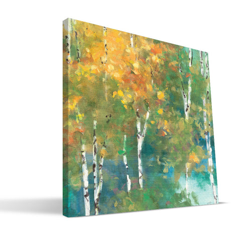 Fall Aspen Canvas Print