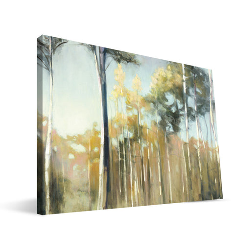 Eucalyptus Grove Canvas Print