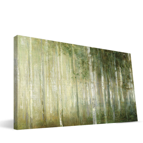 Sappling Woods Canvas Print