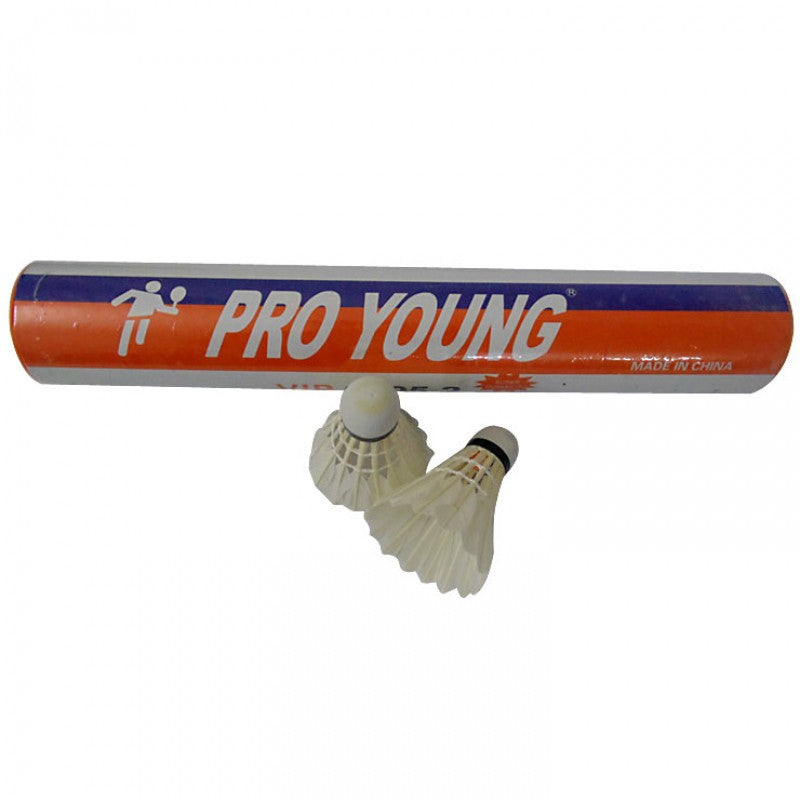 Pro Young Feather Badminton Shuttlecock Box (STS-009)