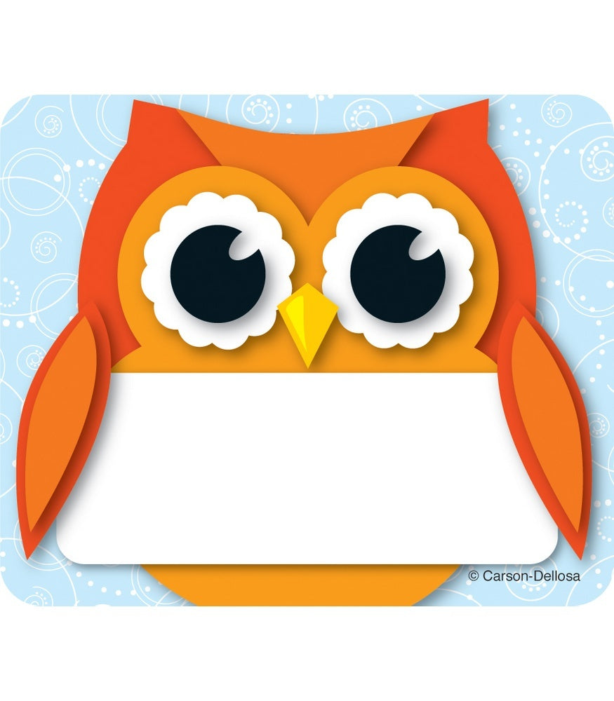 Colorful Owl Name Tags Labels, 40 Count (CD-150036)