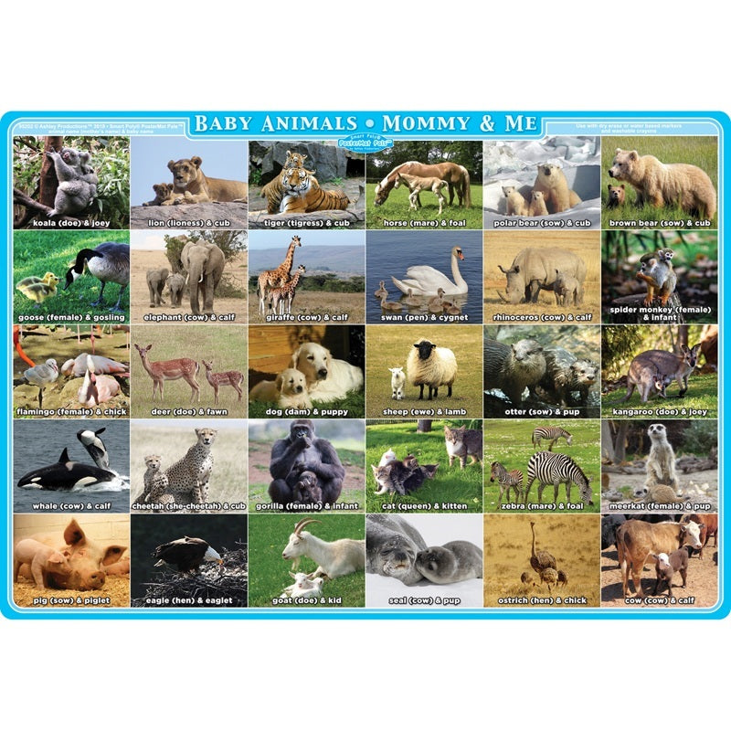 "Ashley Productions® Smart Poly® Single Sided Postermat Pals®, Mommy And Me Animals, 12"" X 17.25"" (ASH95202)"