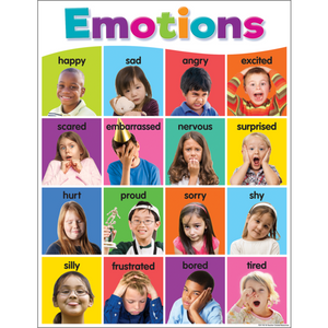 Teacher Created Resources Colorful Emotions Chart (TCR7107)