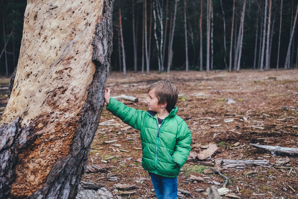 boy near a tree wearing some jeans; photo credit: annie spratt