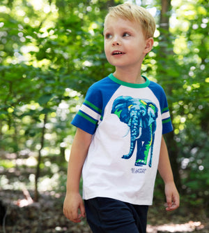 AYDEN T-SHIRT - Animal Planet Boys